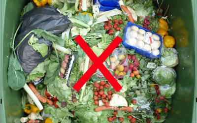 No Food Waste